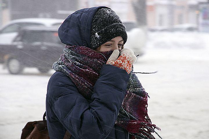 Снегопад века в Москве: деревья падают, машины буксуют, самолеты задерживают