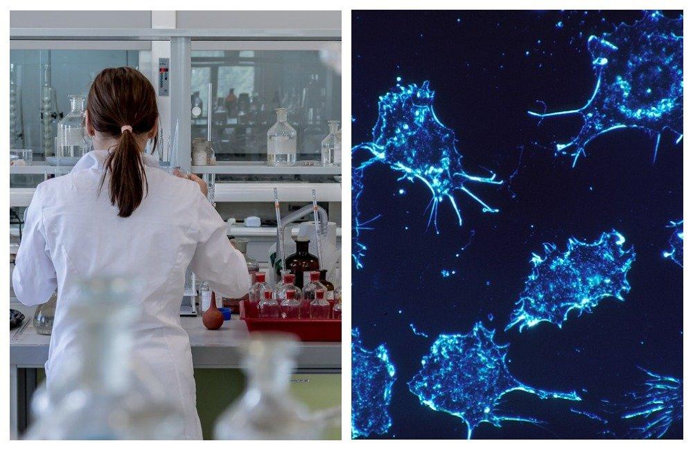 Ученые рассказали о способе выявления рака с помощью воды