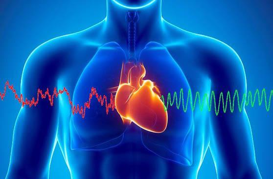 Как организм предупреждает об остановке сердца