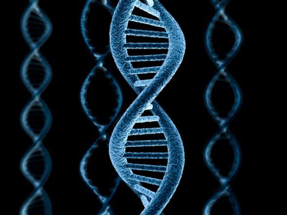 УЗИ – добровольная платная мутация – расплата через 15-20 лет