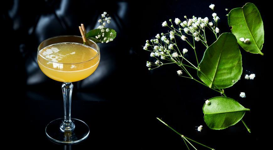 Спиртные напитки. Женские коктейли