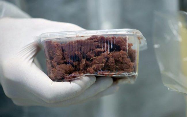 «Мясо из пробирки» получило одобрение в США
