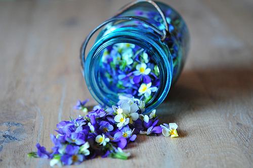 Создаем потрясающий цветочный запах в комнате