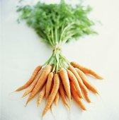 Чтобы сохранить память в пожилом возрасте, надо ежедневно есть морковь