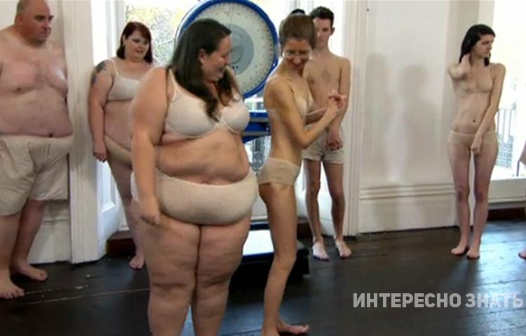 Почему в обществе не любят толстых людей