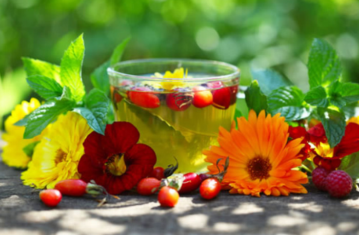 Лечение народными средствами атеросклероза сосудов