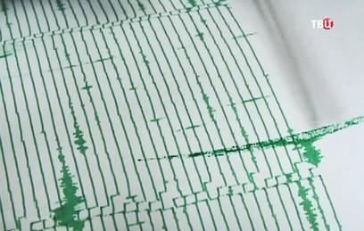 Землетрясение в Мексике унесло жизни не менее двух человек