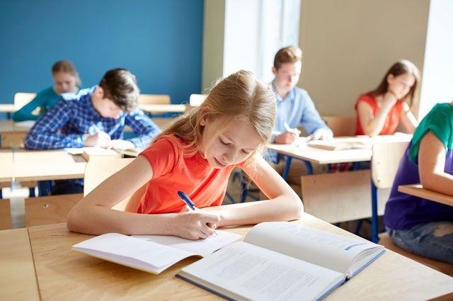 Вырасти отличника. Психолог о том, как ребёнку стать успешным учеником