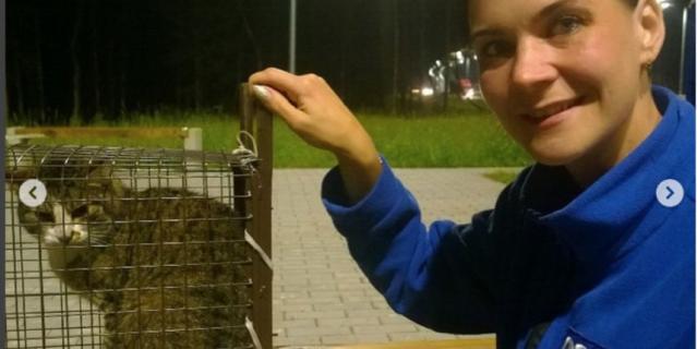 Потерявшегося на трассе кота Севу нашли спустя 1,5 месяца в Петербурге