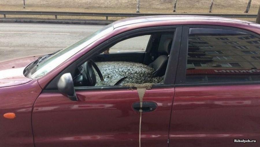 Мужчина наказал жену бетоном