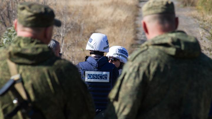 Ликвидация нацистов украинским спецназом: ВСУ пытаются замалчивать убийство мешавших разведению сил