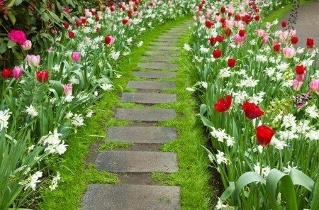 Красивые идеи для вашего сада