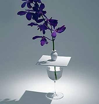 необычные идеи для цветочной композиции