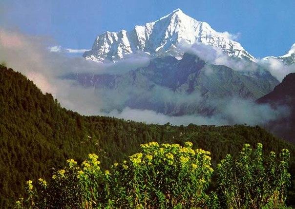 Как согреться дыханием, на холоде? Секрет йогов и мистиков Тибета.