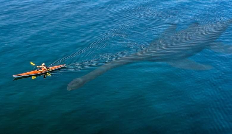 Загадочное существо появилось в небольшом шотландском озере
