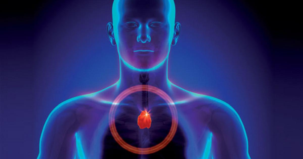 Активизируй работу вилочковой железы и что-то невероятное произойдёт с вашим организмом