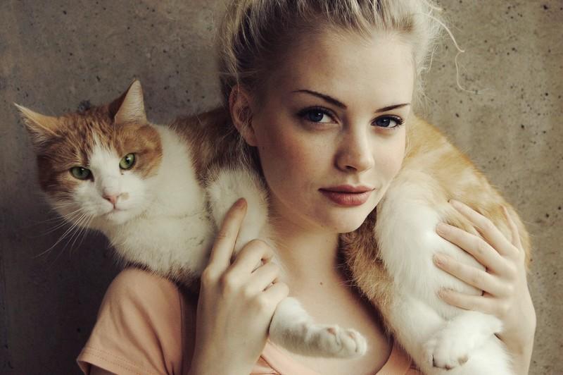 kitties11 30 способов использования котов в хозяйстве