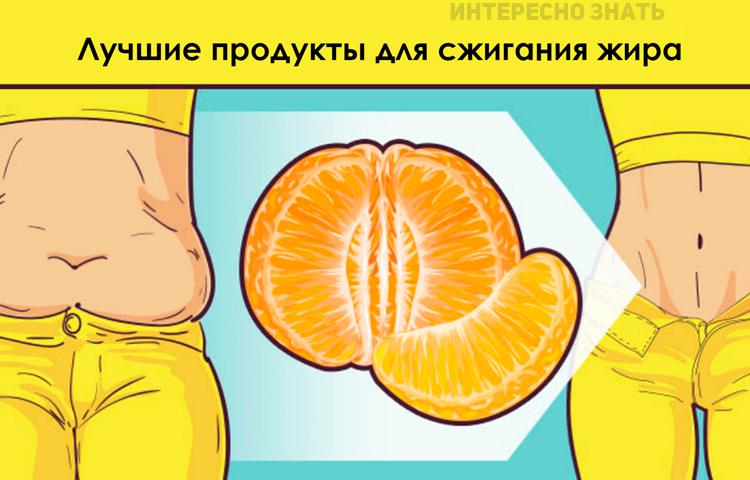 12 продуктов, которые лучше всего сжигают жир у женщин