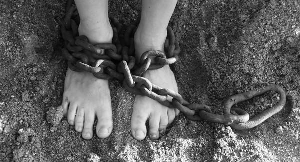 Кто они «севастопольские рабы»? История о том, как исполнительная власть помогла многодетной семье остаться без работы