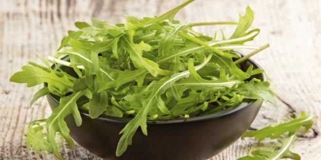 Руккола – полезные свойства салата