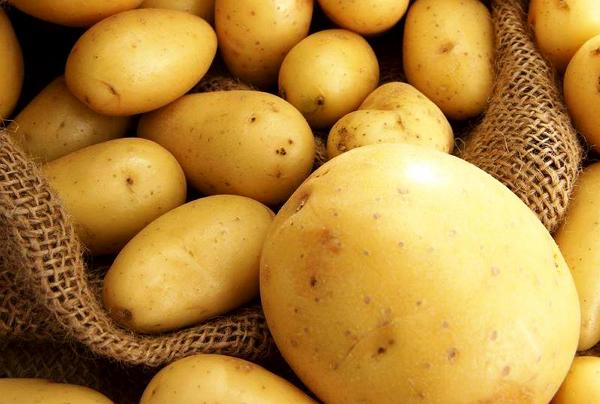 «Хочешь долго жить – ешь картофель!»
