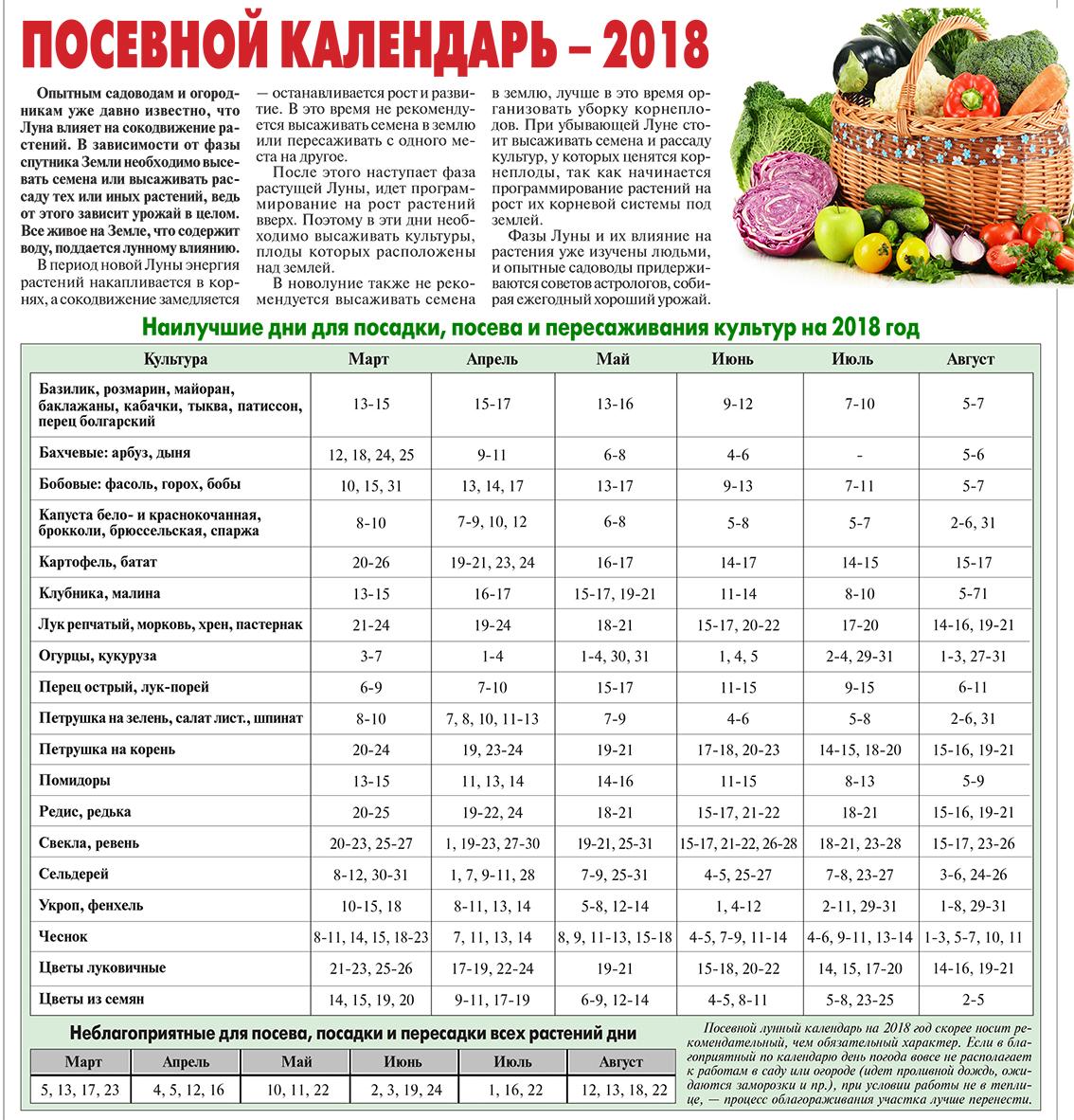 Когда сажать лук севок в открытый грунт в 2018 году по лунному календарю 67