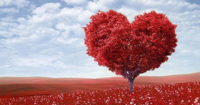 Романтическая любовь VS настоящая любовь