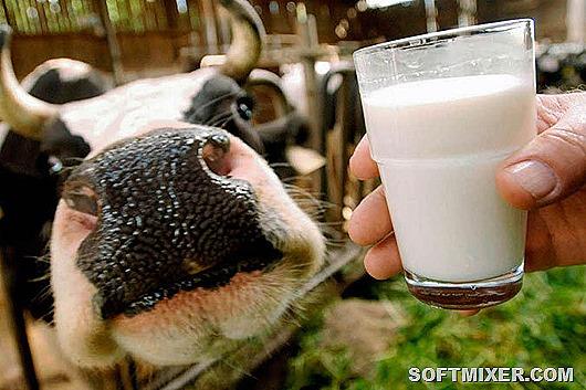 Вся правда о молоке