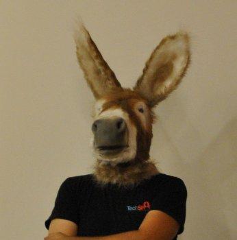САМОДЕЛКИ. Как сделать маску осла