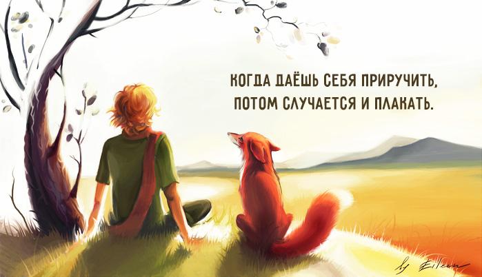 Мудрые цитаты из легендарной сказки для взрослых — «Маленький принц»