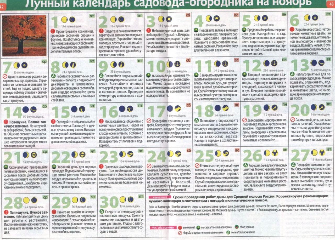 Лунный дачный календарь на ноябрь 2012 года