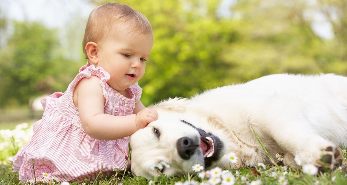 Святость материнства в мире …