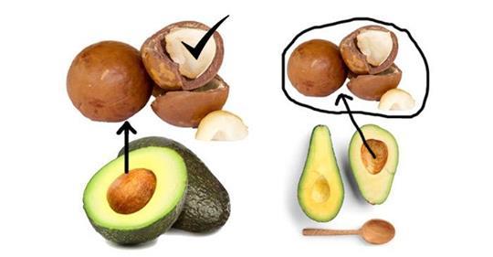 5 удивительных преимуществ семян авокадо