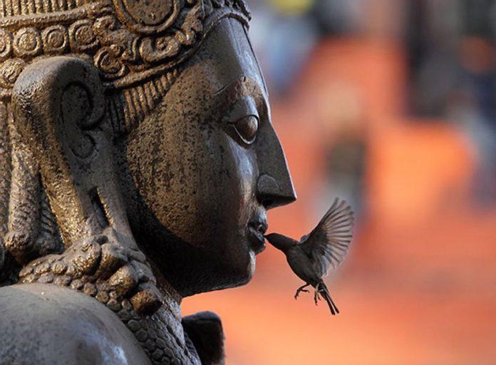 4 мудрых жизненных урока для каждого знака зодиака