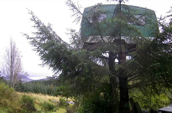 В Шотландии туристам предложили пожить в фургоне на дереве