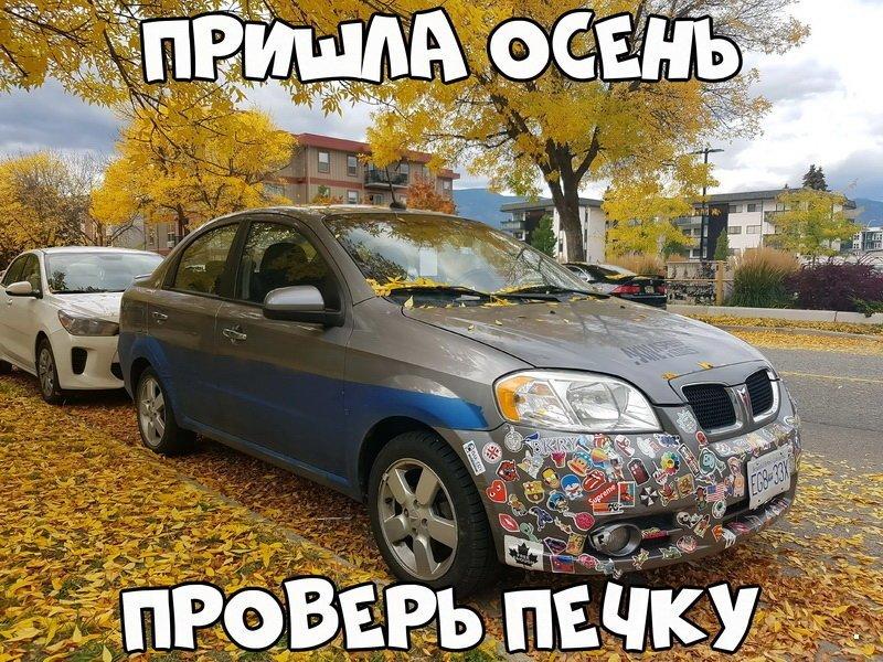 Автовсячина (40 фото)