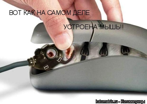 Ой, че-то мышь не работает...