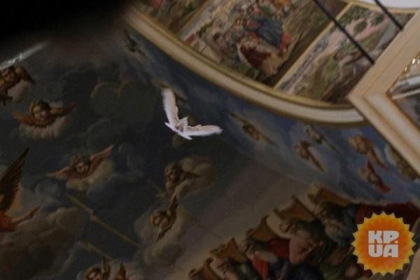 Перед молебном, который совершал в Успенском соборе митрополит Онуфрий, в храм залетел белый голубь