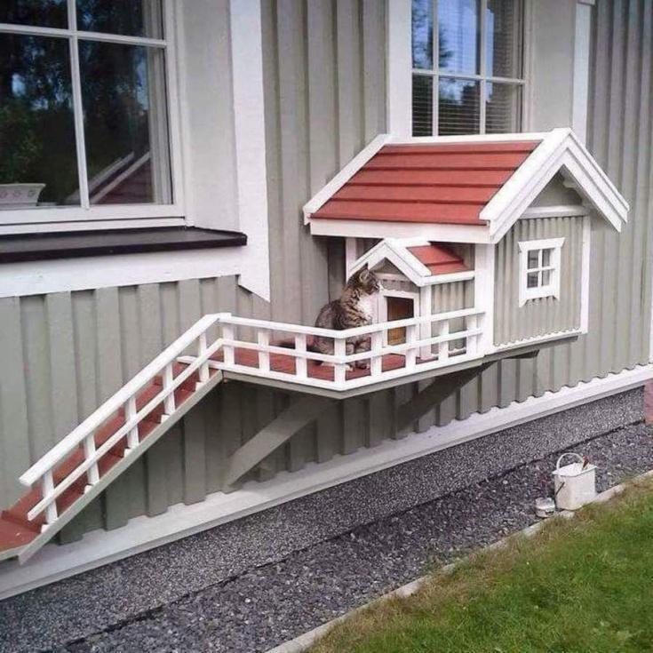 Дом с отдельным входом для кошки