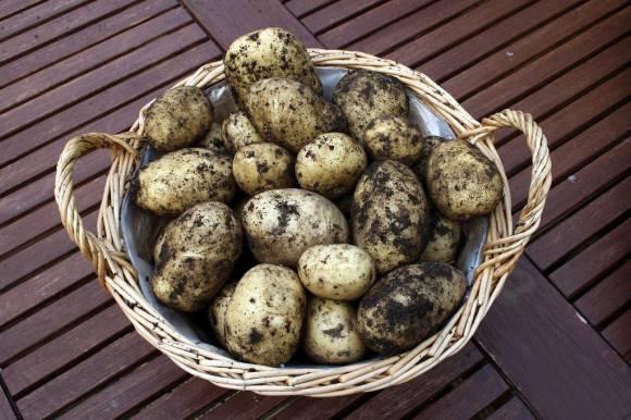 6 лучших картофельных гарниров фото 2