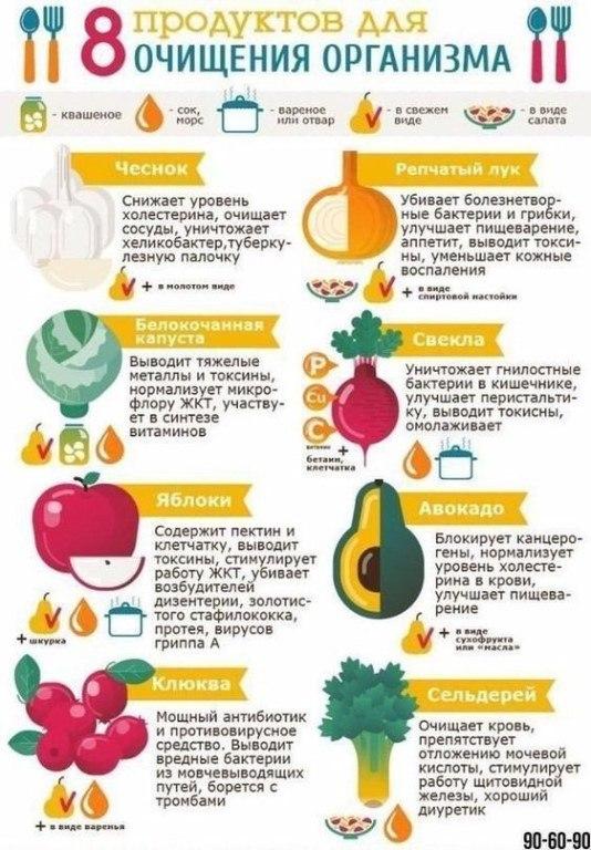 Полезные советы по питанию на все случаи жизни