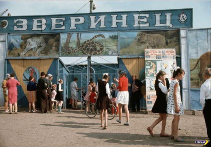 Прекрасная подборка редких фотографий СССР времен середины 1960-х