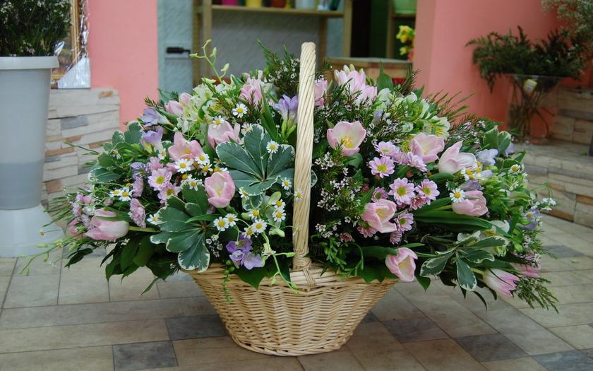 букет, корзина, композиция, тюльпаны, ромашки, хризантемы