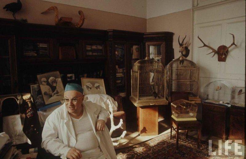 Советские врачи. СССР, качество, медицина, фото