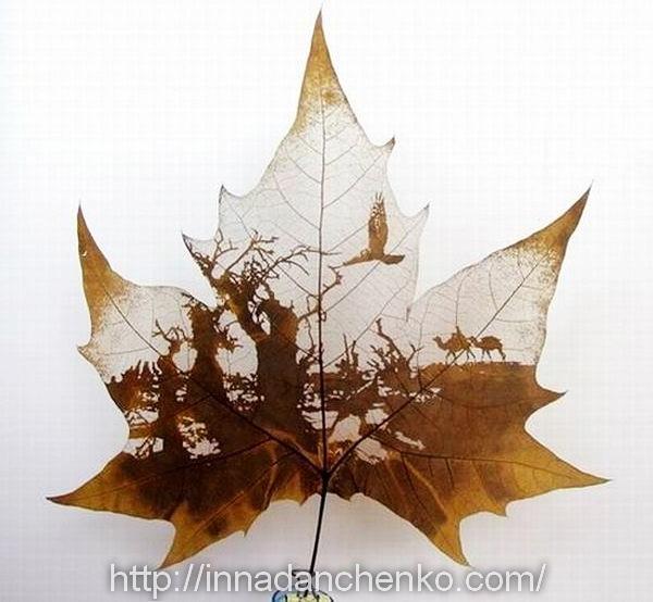 Скелетирования листьев в домашних условиях