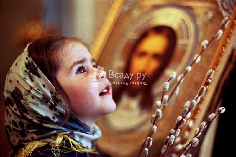 Вербное или Прощеное воскресенье - просим прощенья у родных