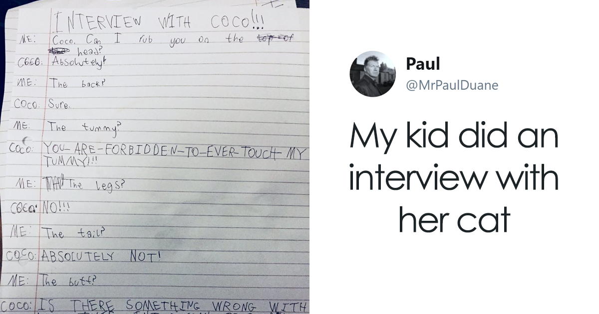 Little Girl Did An Interview With Her Cat And Someone Suggested It Should Be Illustrated, So We Did