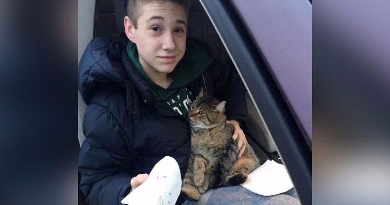 Отчаянный поступок. Подросток спас кота, рискуя собственной жизнью!