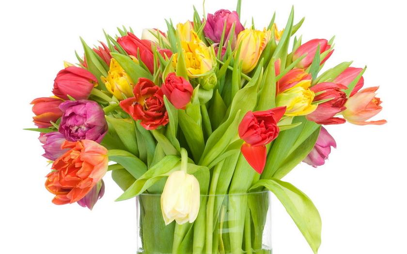 букет, тюльпаны, ваза