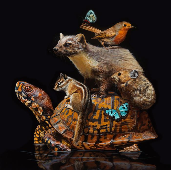 Мир, который держит черепаха на своей спине. Автор: Lisa Ericson.